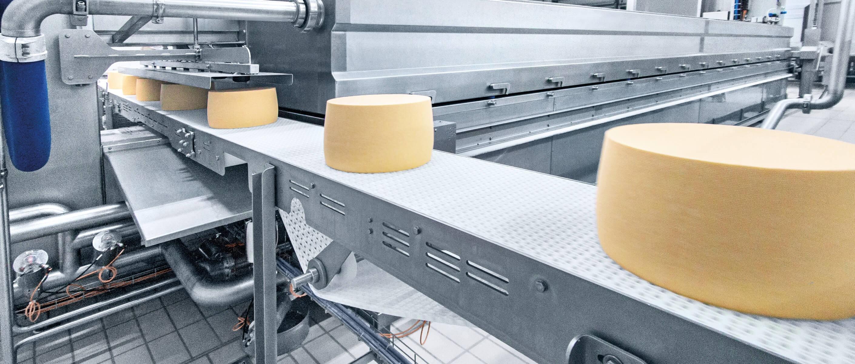 Оборудование сыров